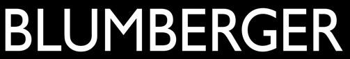 blumberger-waidhofen-logo.jpg