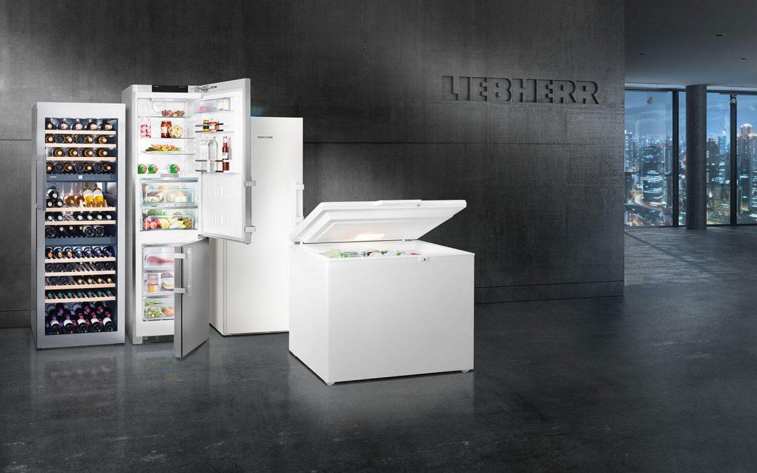 Fünf hilfreiche Experten-Tipps für den Kühlschrank Kauf von Liebherr